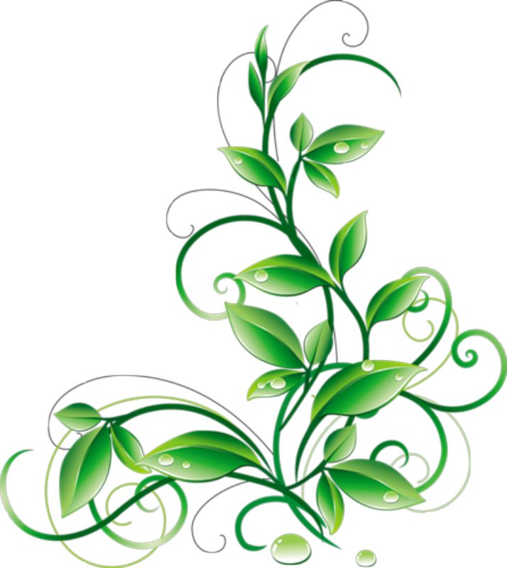 Floral green leaves and. Water clipart banner