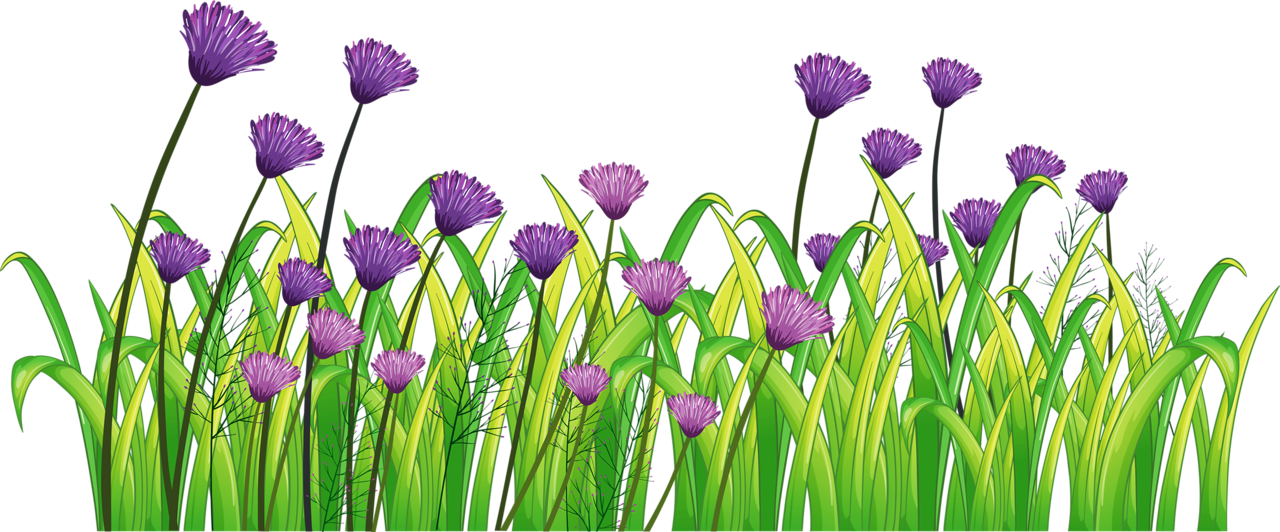 Flowers clipart landscape.  png and album