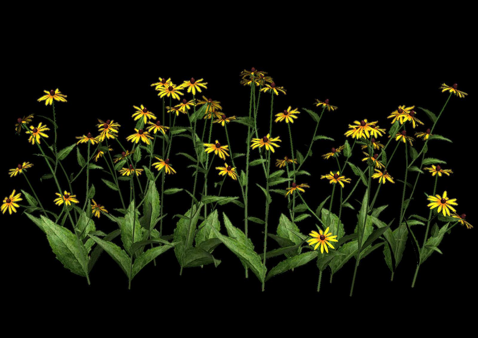 poppy clipart planter #139446836