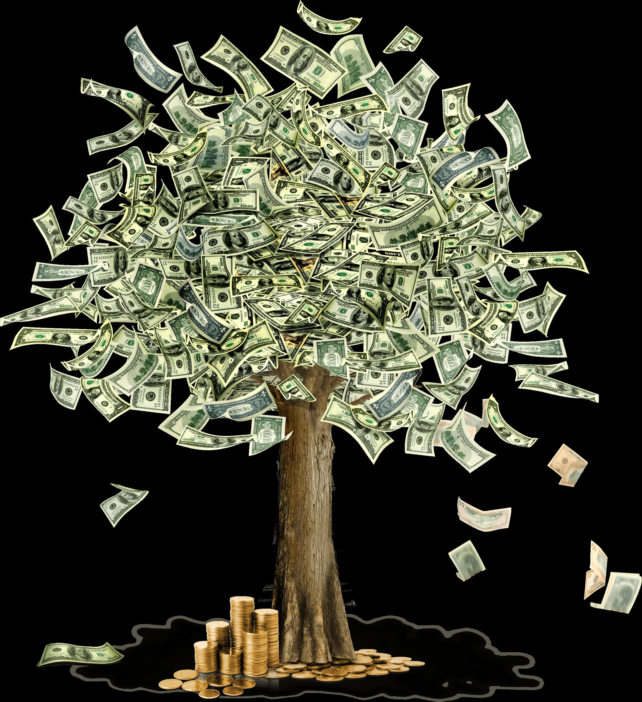 Clipart flower money. Tree transparent png stickpng