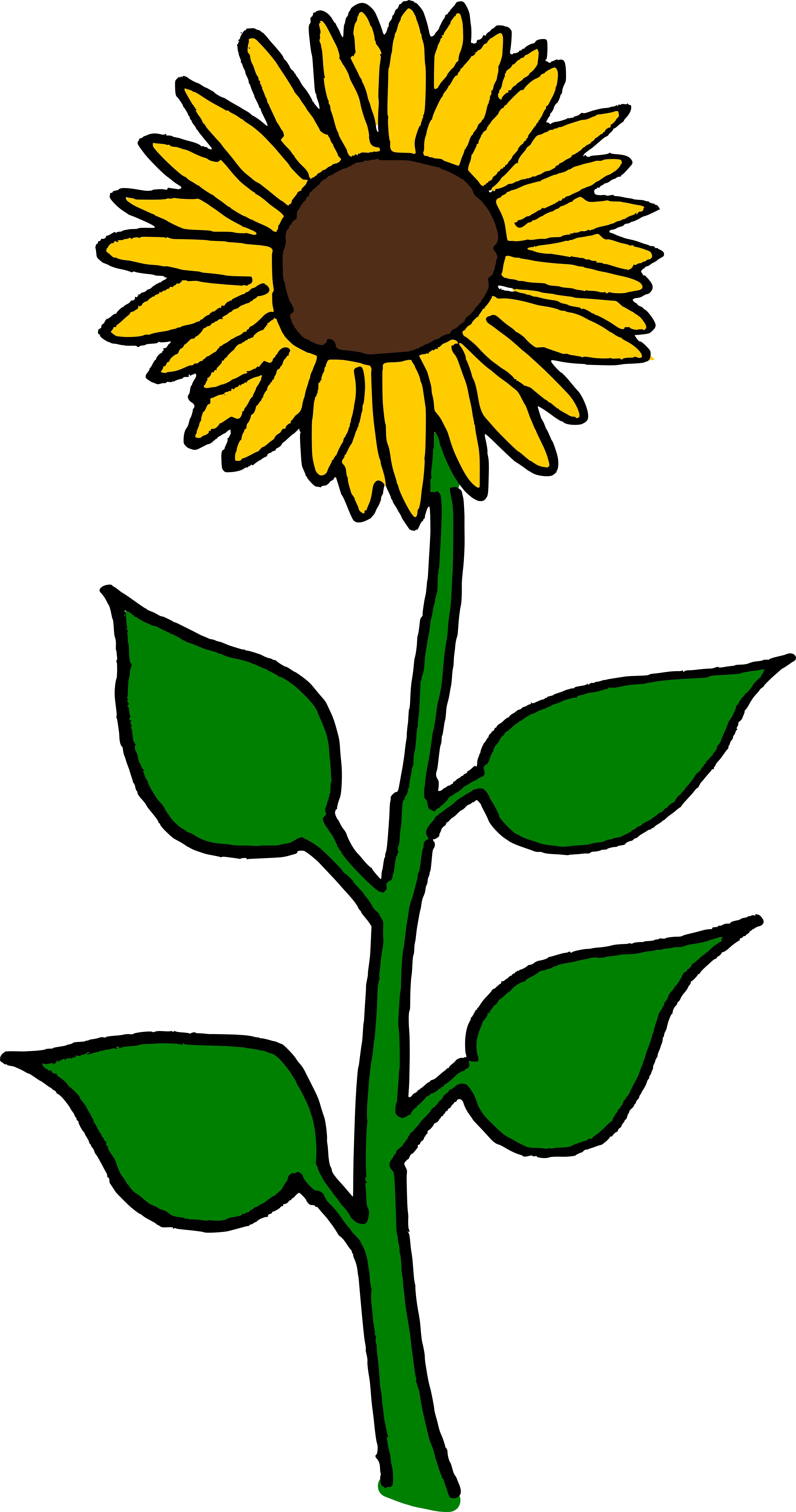 Name clipart flower. That answers the muddy