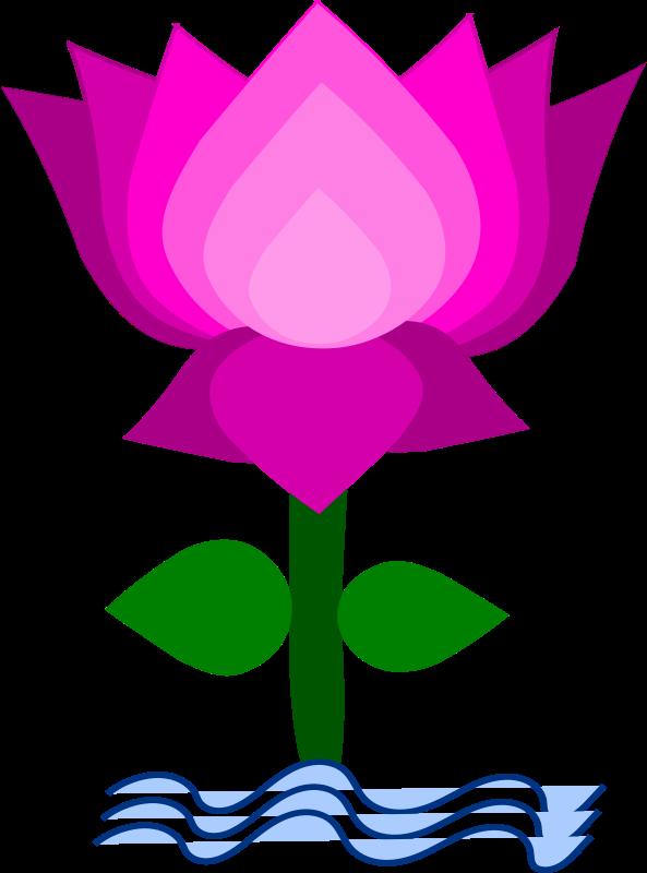 Flower clipart nelum.  collection of kamal