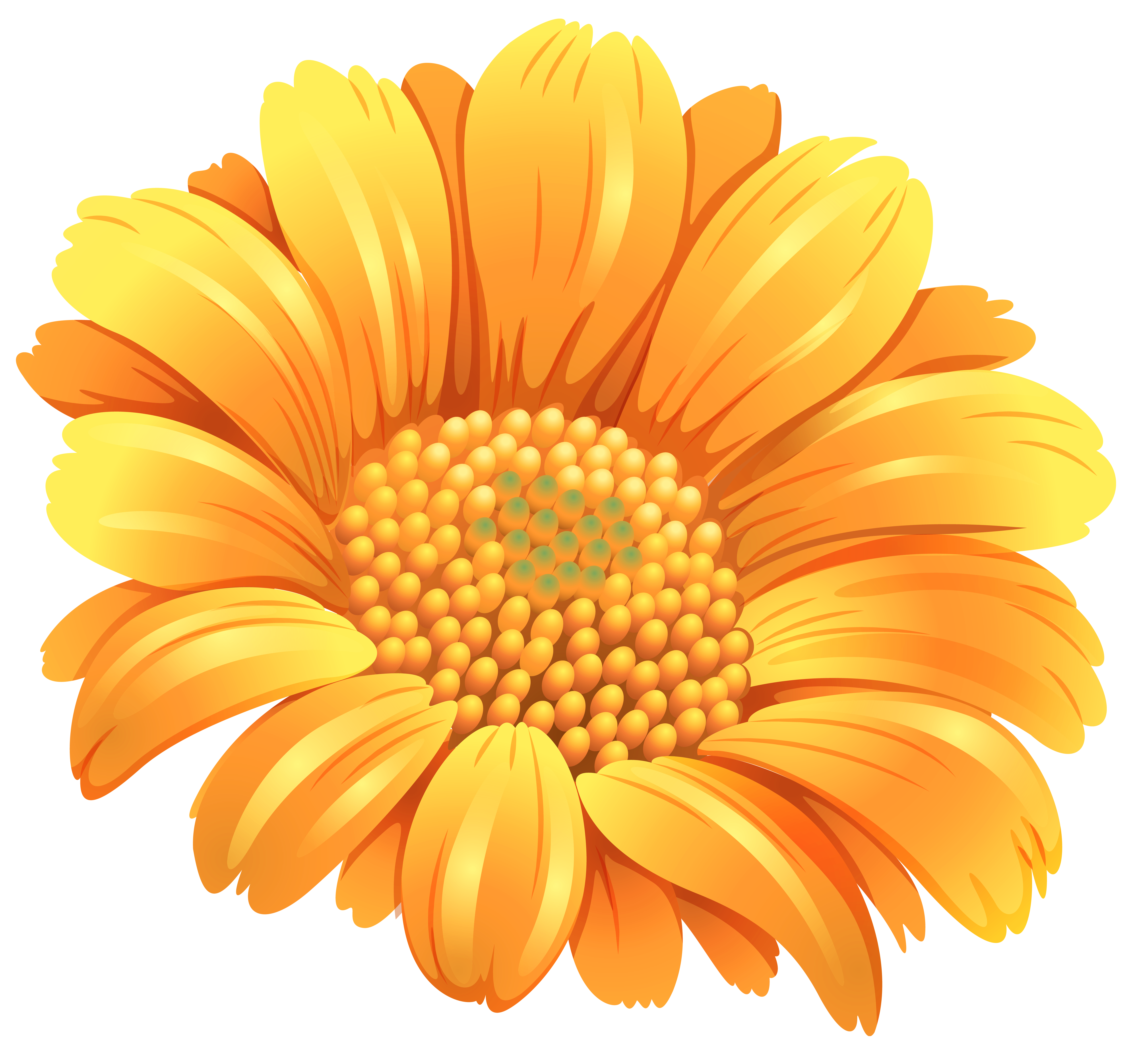 Orange flower png. Clipart image gallery yopriceville