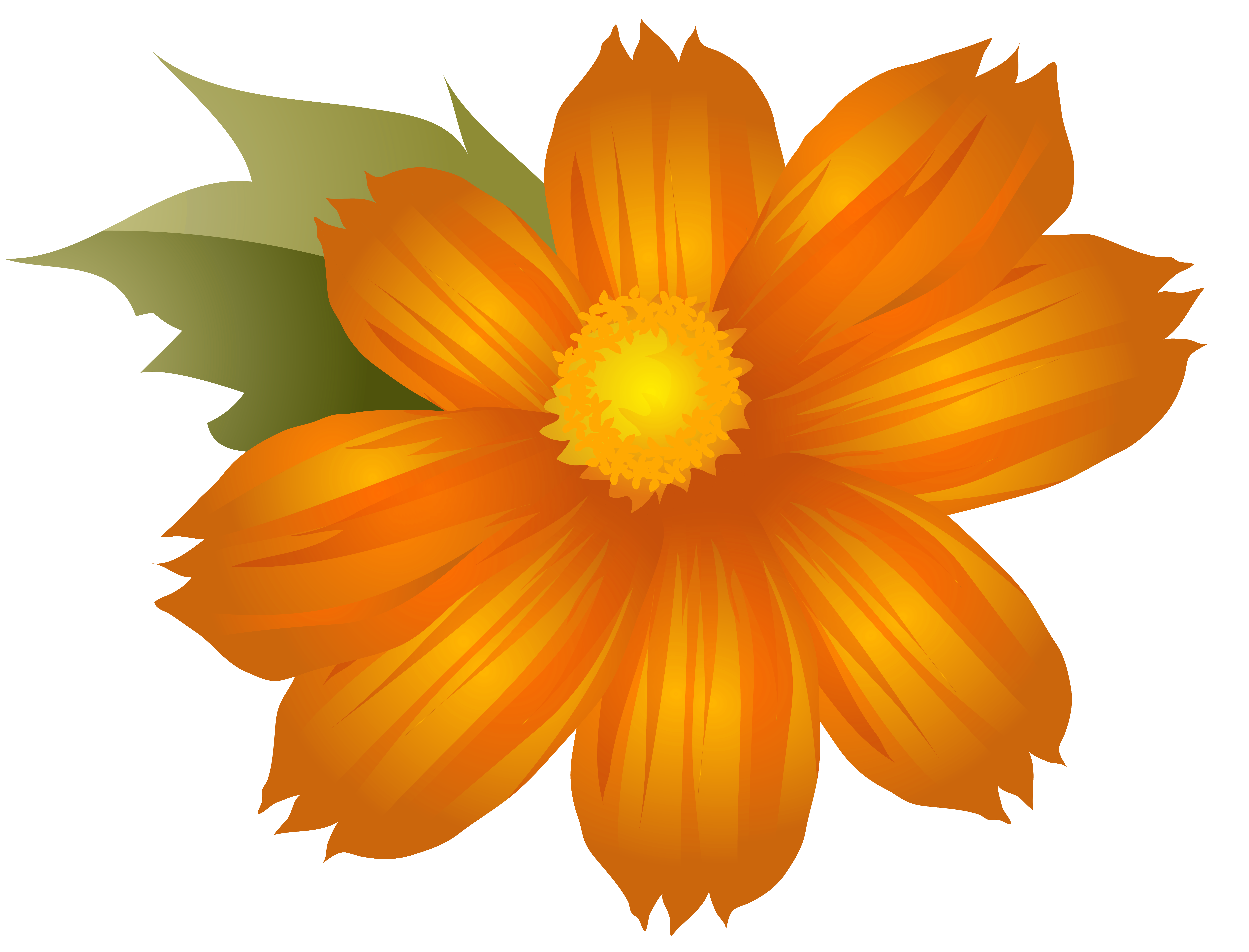 Clip art image gallery. Orange flower png