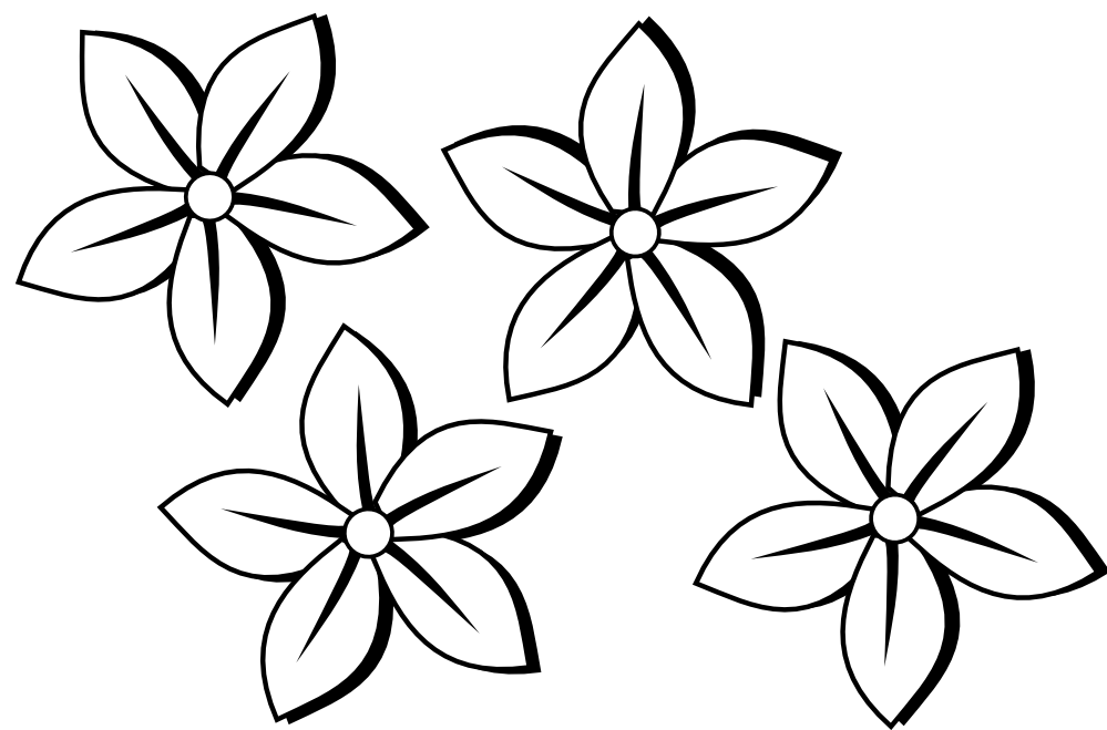 Outlines of flowers for. Pencil clipart coloring