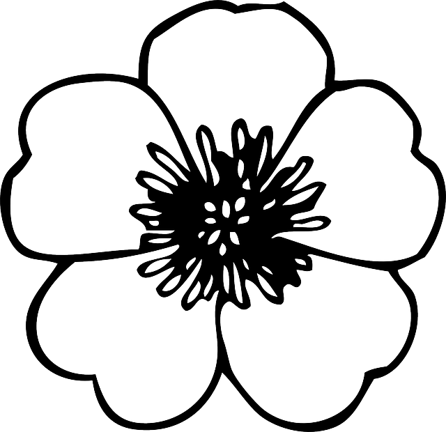 Poppy clipart black and white. Green large simple small