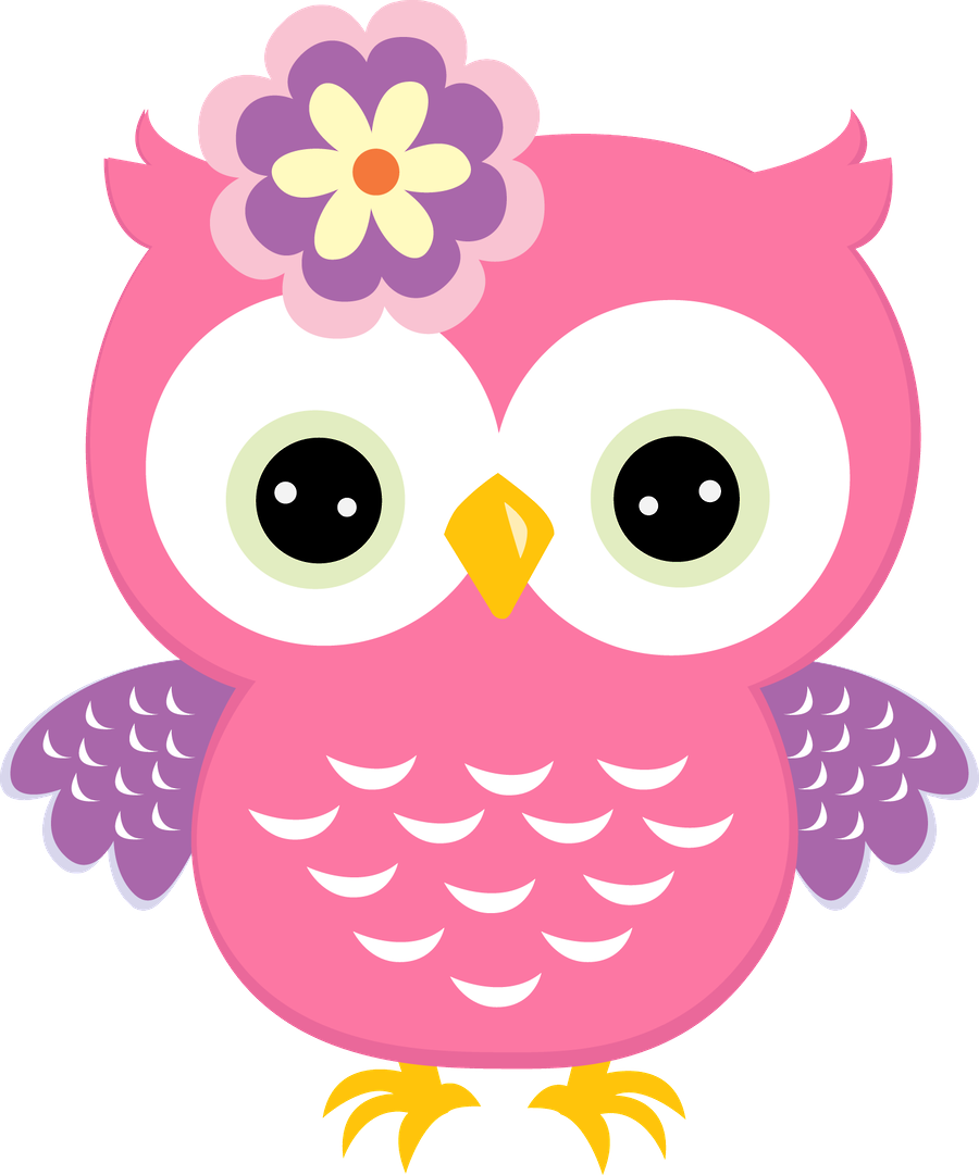 Pink with flower owls. Floral clipart owl
