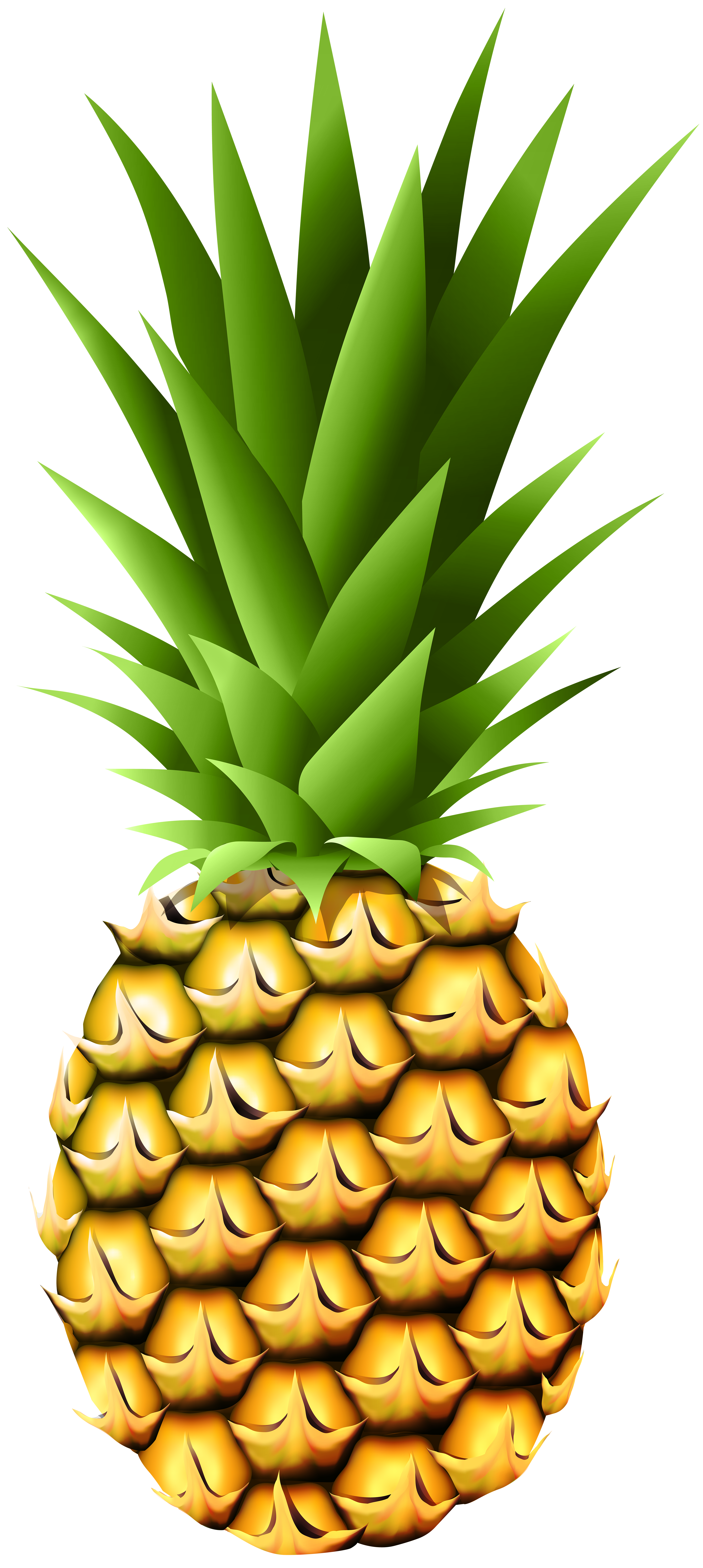 Pineapple clipart cute. Transparent png clip art