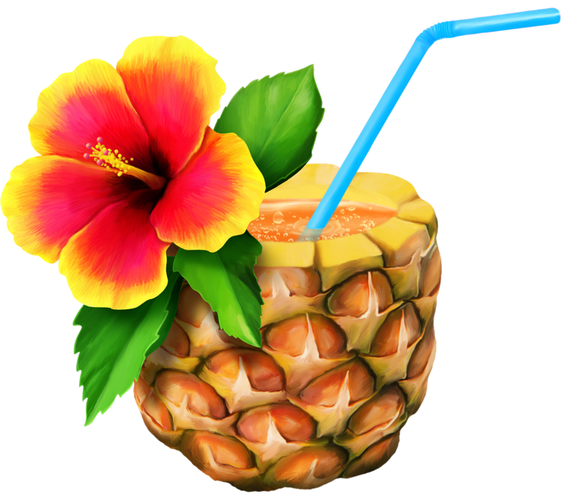 Hawaiian aloha free content. Pineapple clipart flower