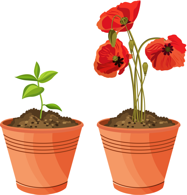 Picture my garden valley. Clipart flowers planter