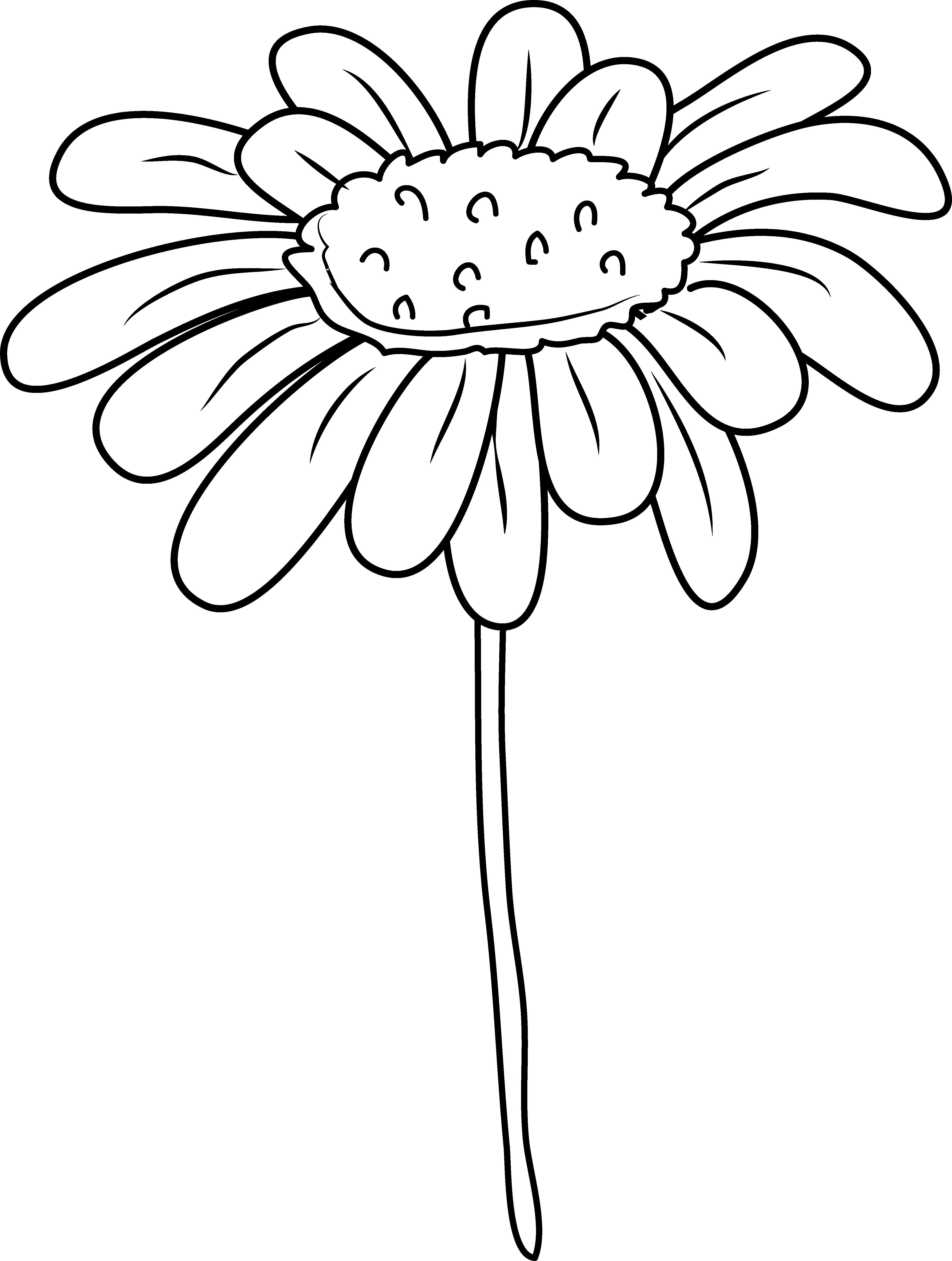 daisies clipart yellowflower