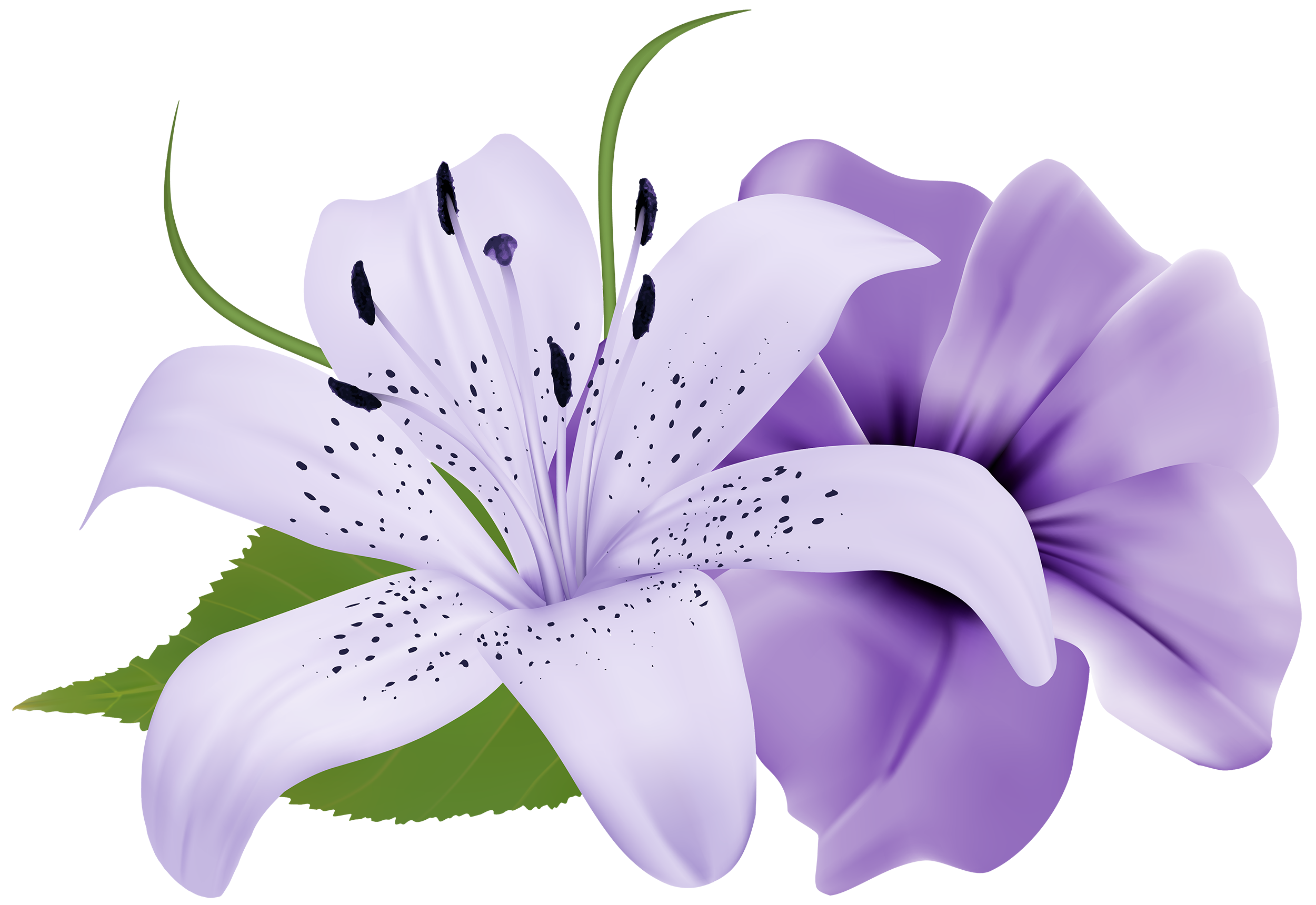 Deco flowers clipart best. Purple flower png