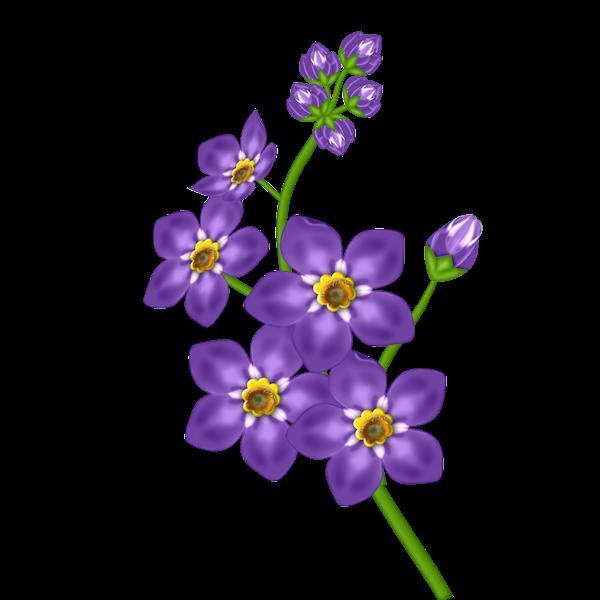 Porple flower gallery yopriceville. Purple clipart transparent