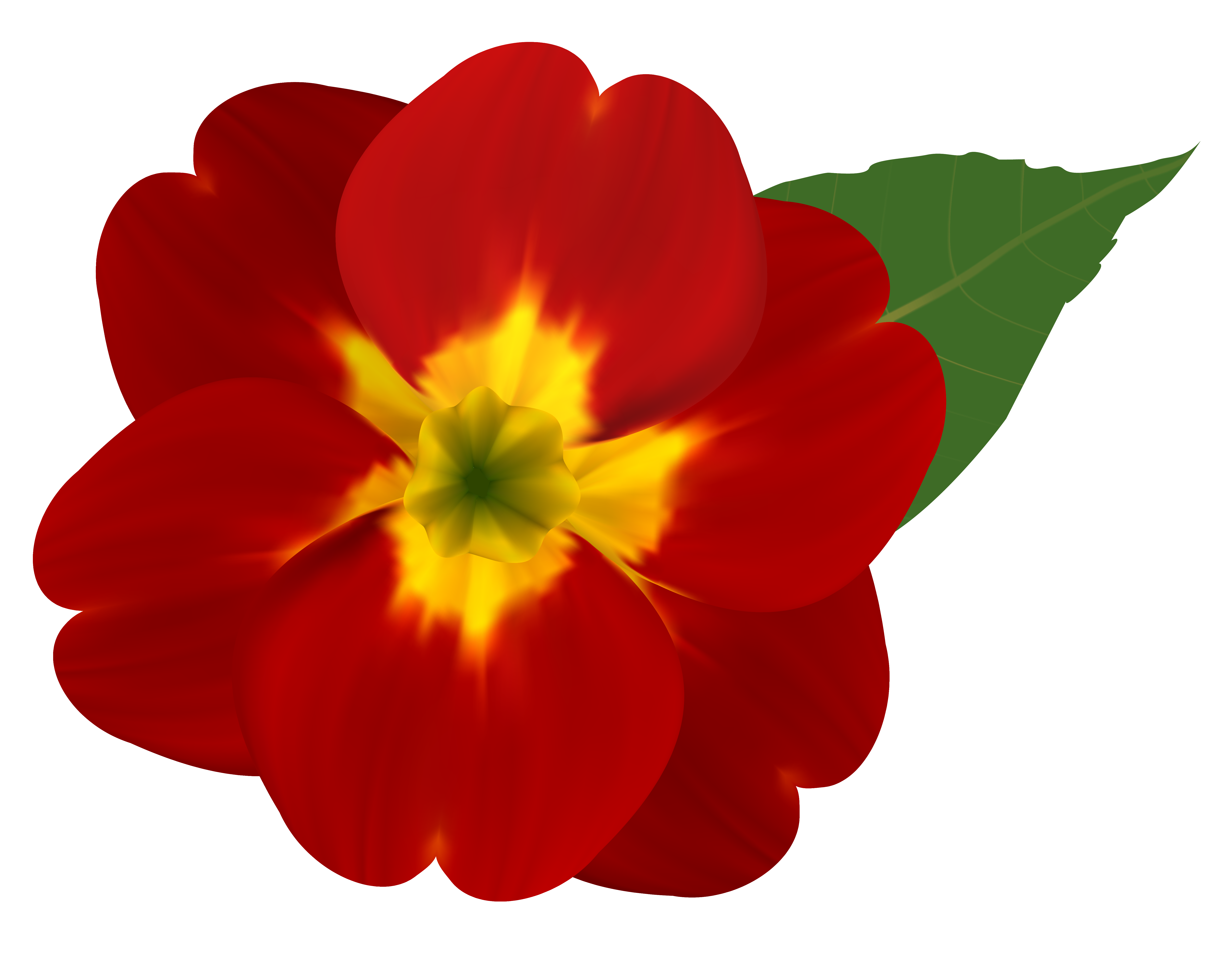 Clipart flower red. And yellow png image
