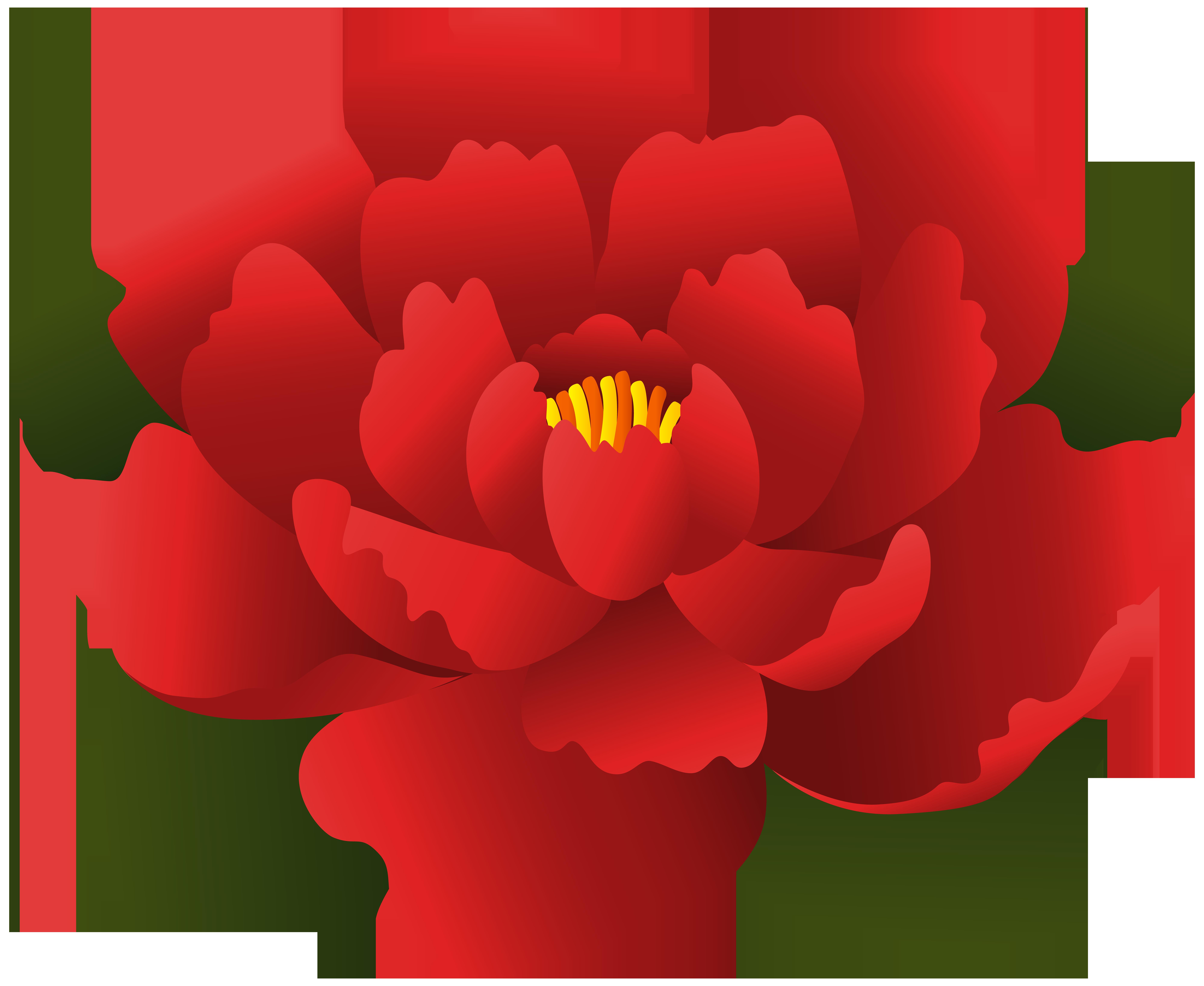 Transparent clip art gallery. Clipart flower red