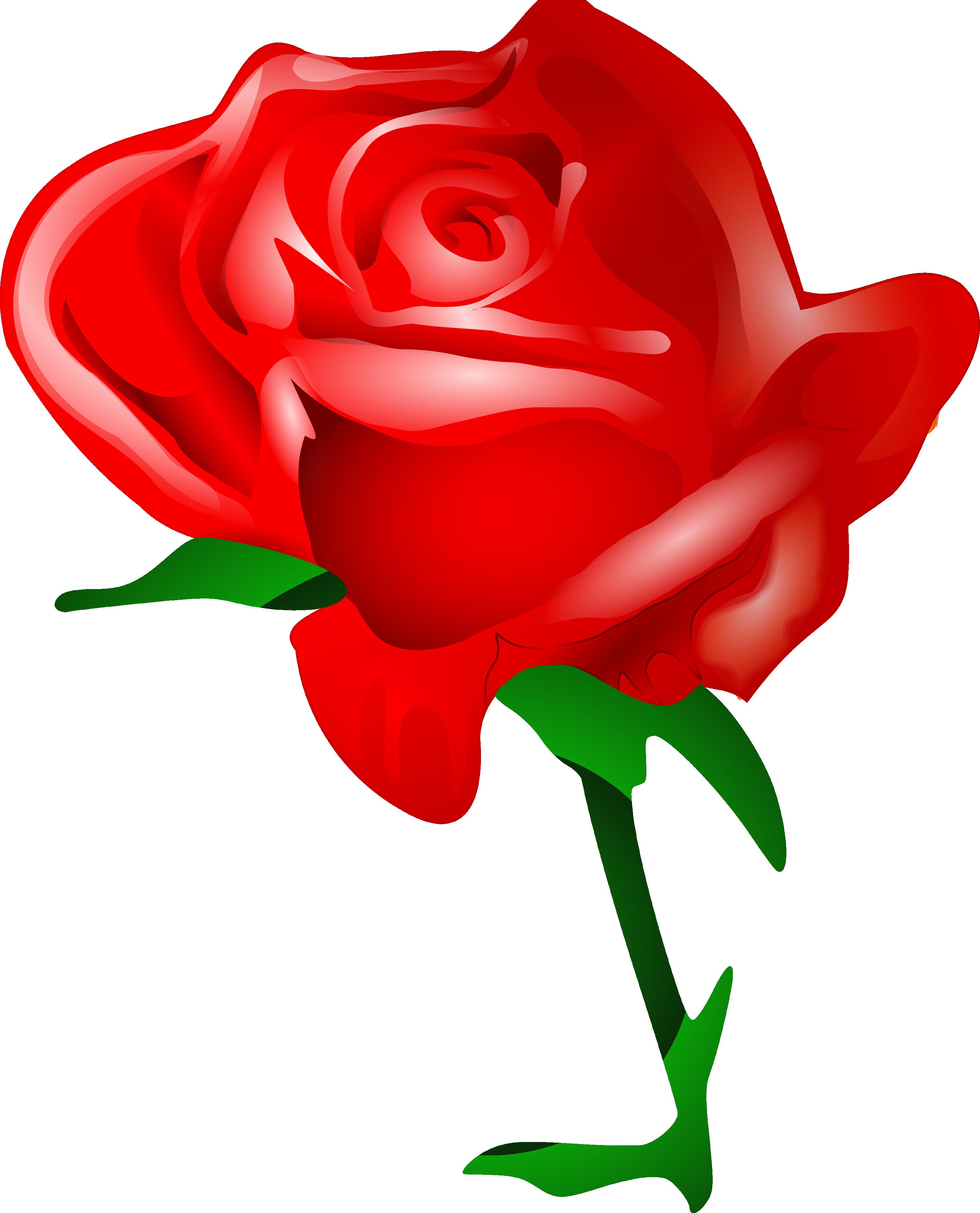 Mayflower clipart flowr. Rose png flower images