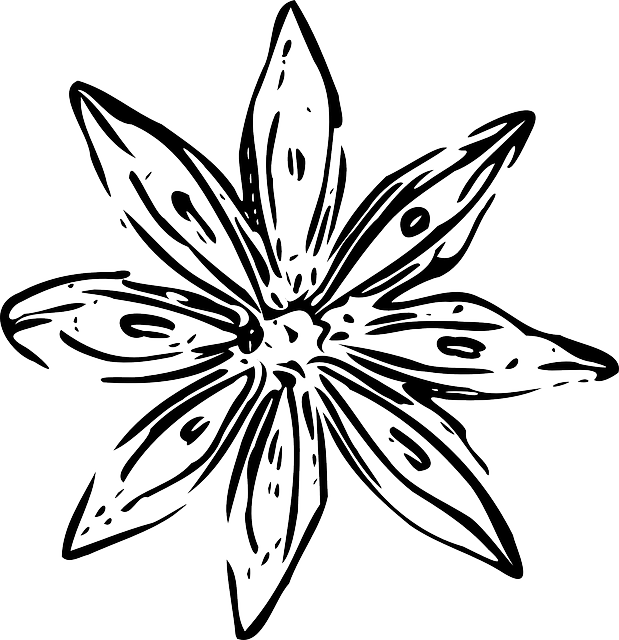 collection of white. Clipart flower sketch