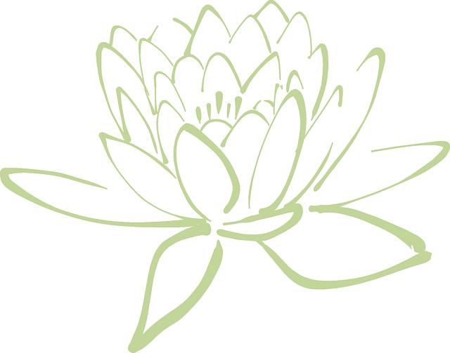 Free image on pixabay. Lotus clipart large flower