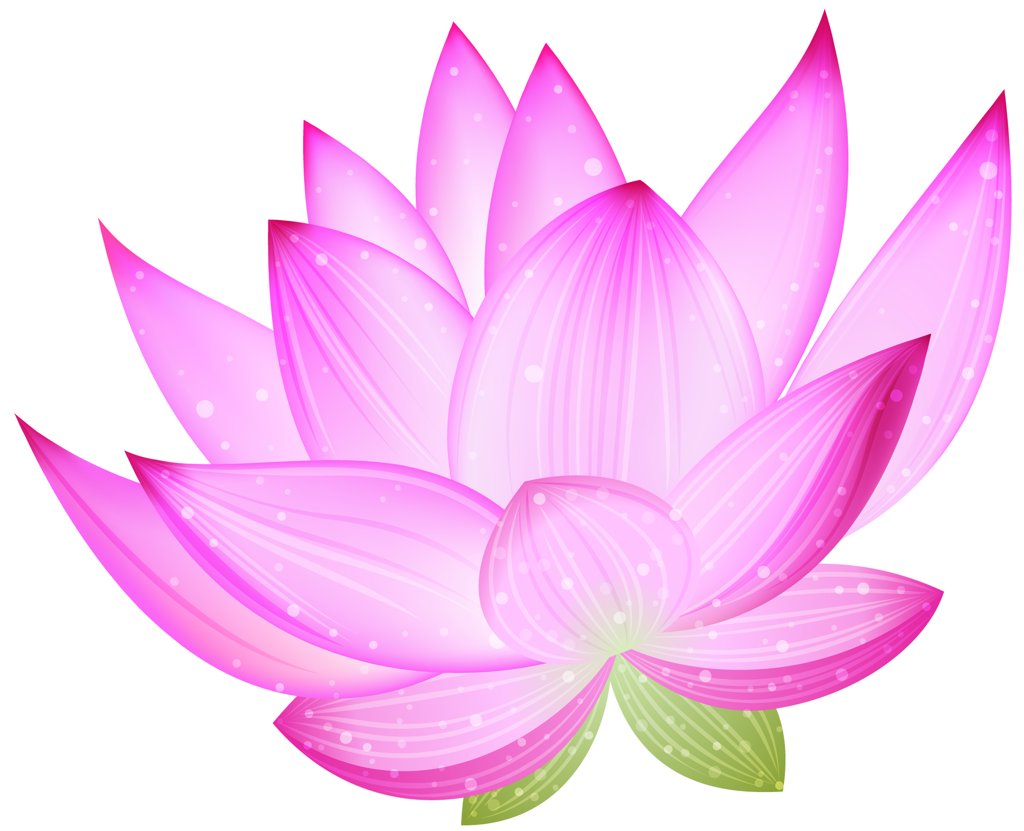 collection of lotus. Clipart gallery large flower