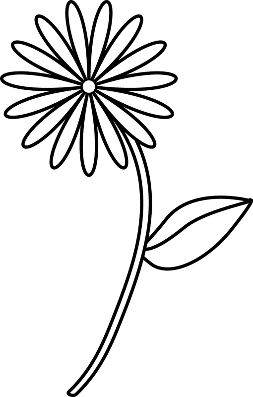 Flower drawing at getdrawings. Cotton clipart cotton stem