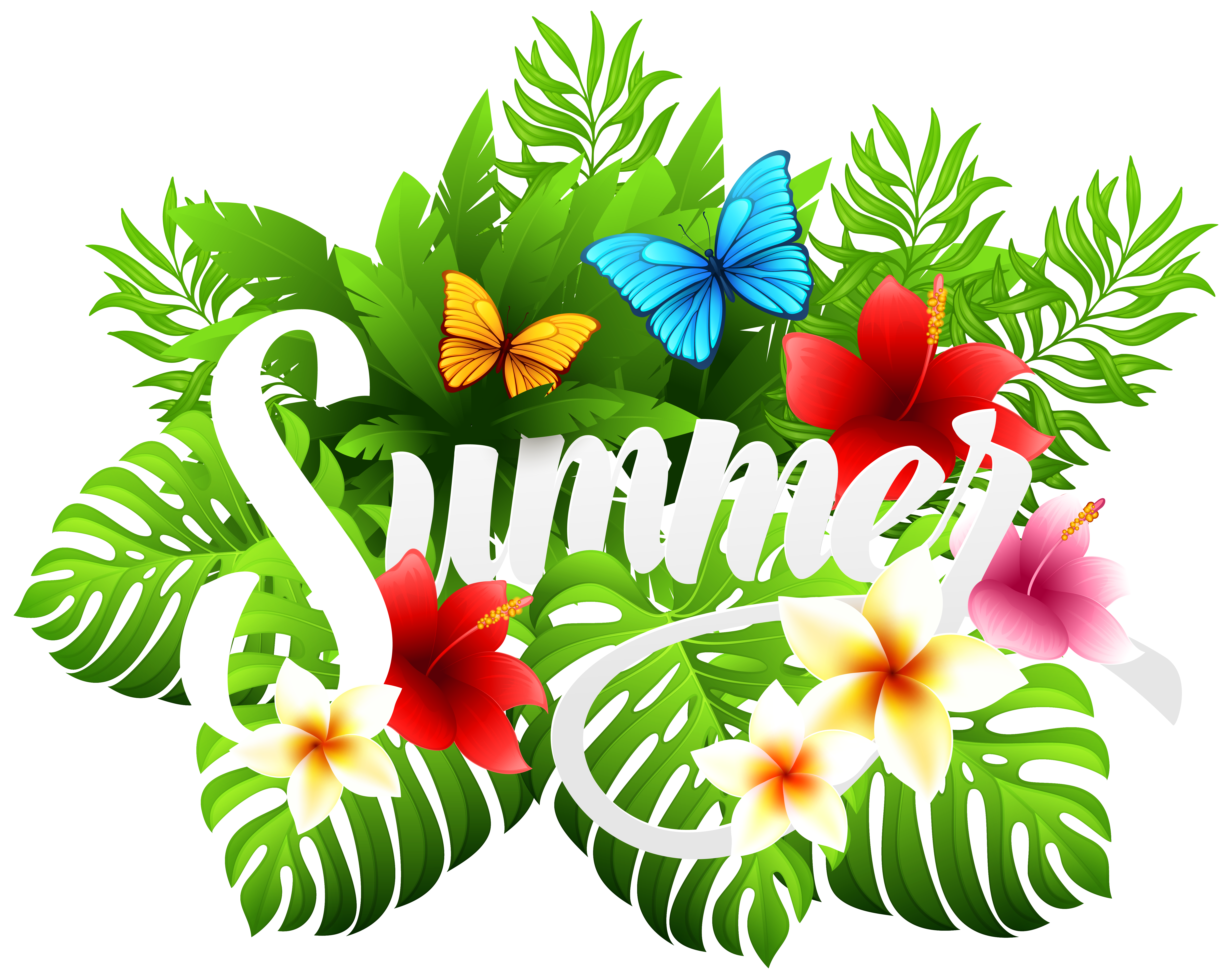 Decorative image png gallery. Clipart flowers summer