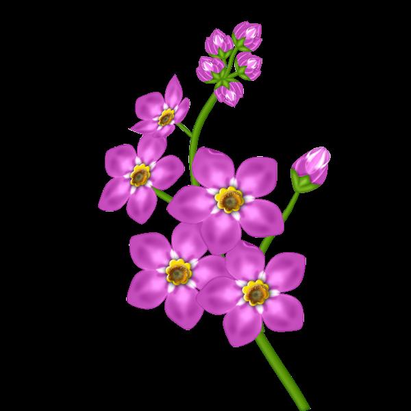 Pink flower transparent png. Clipart roses lavendar