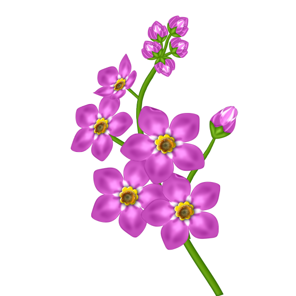 Pink flower transparent png. Lavender clipart cross