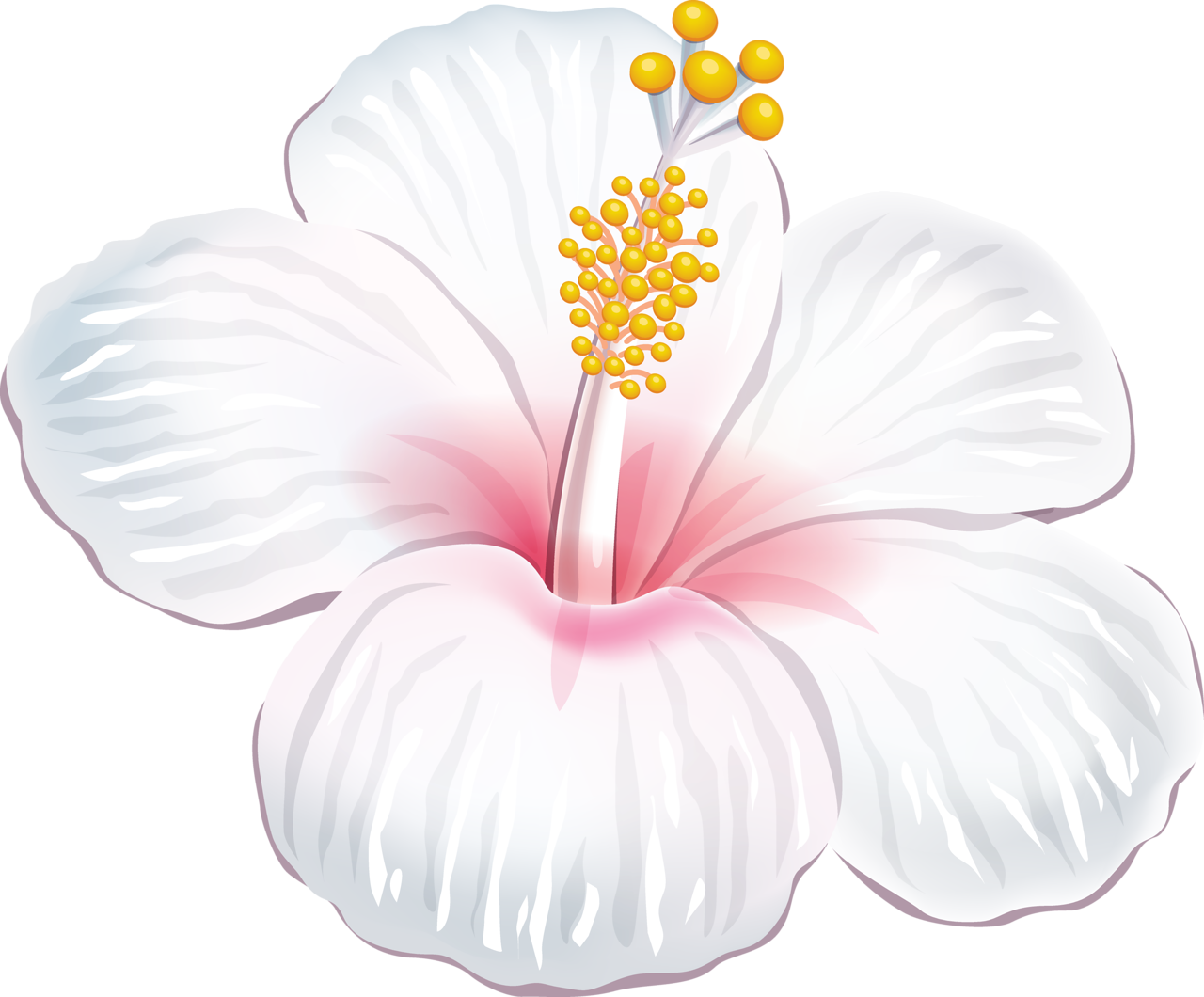Moana clipart flower china.  a dc db