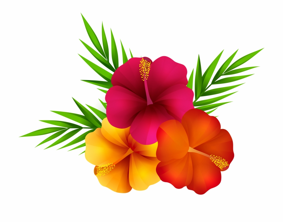 Exotic png clip art. Clipart flowers tropical