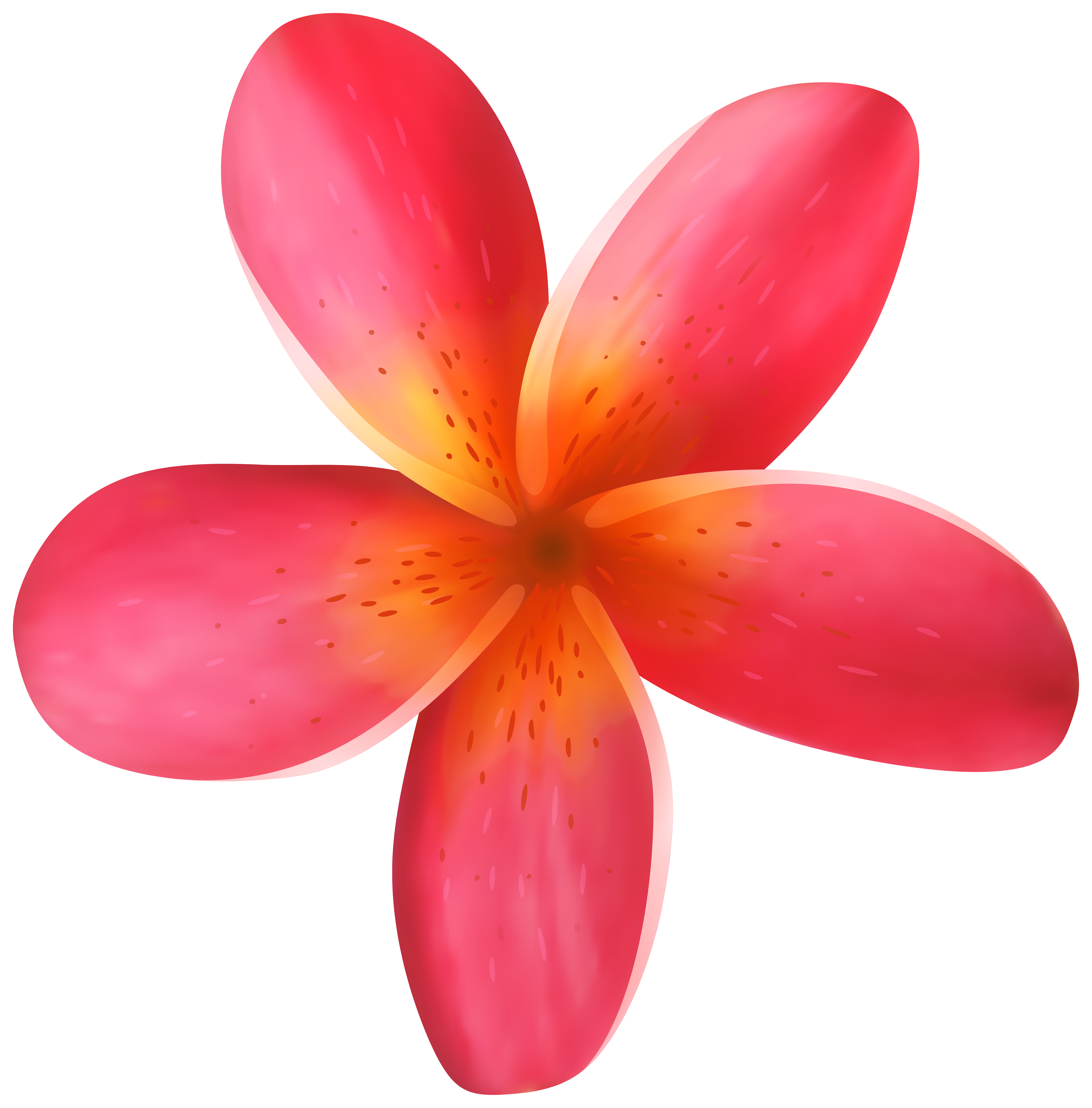 Clip art image gallery. Tropical flower png