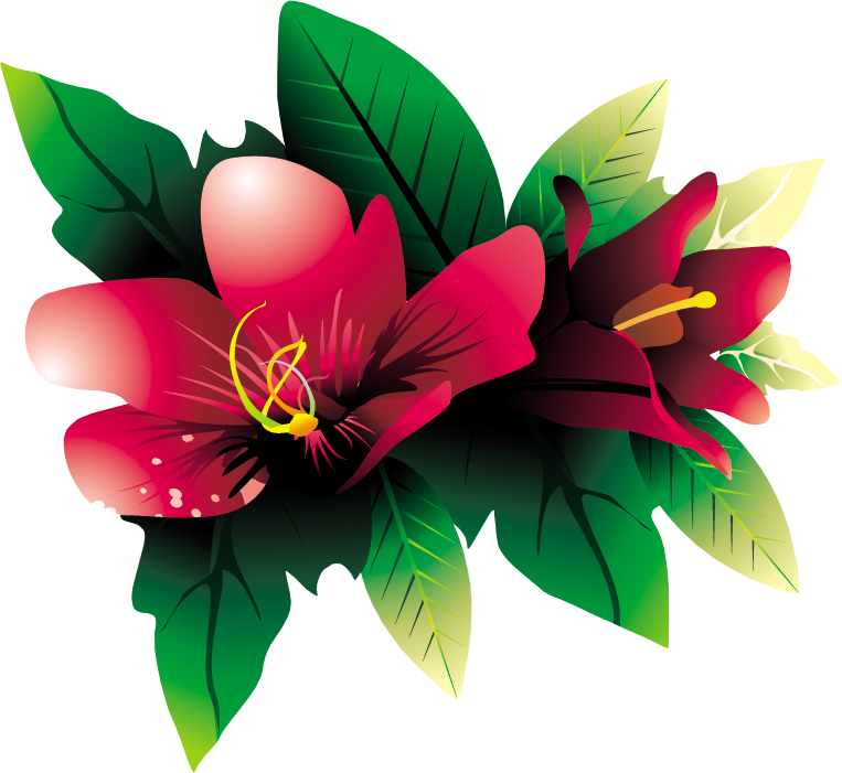 Tropical flower png. Hq by briellefantasy on