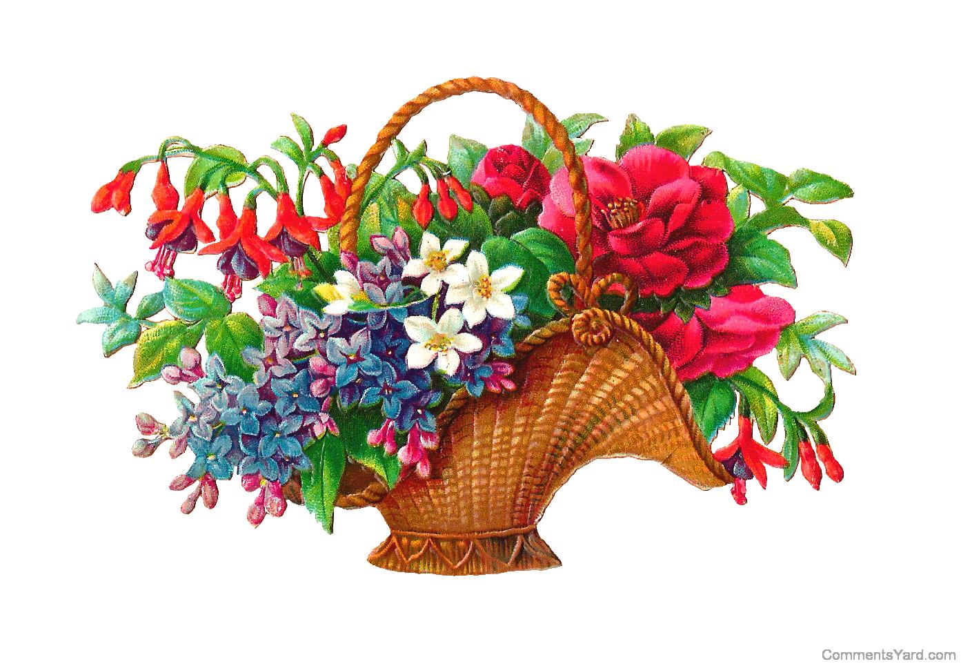 Clipart flower tub. Gifs hermosos lovely pinterest