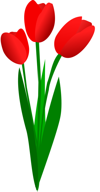 Tulip flower clip art. Therapy clipart psychosocial