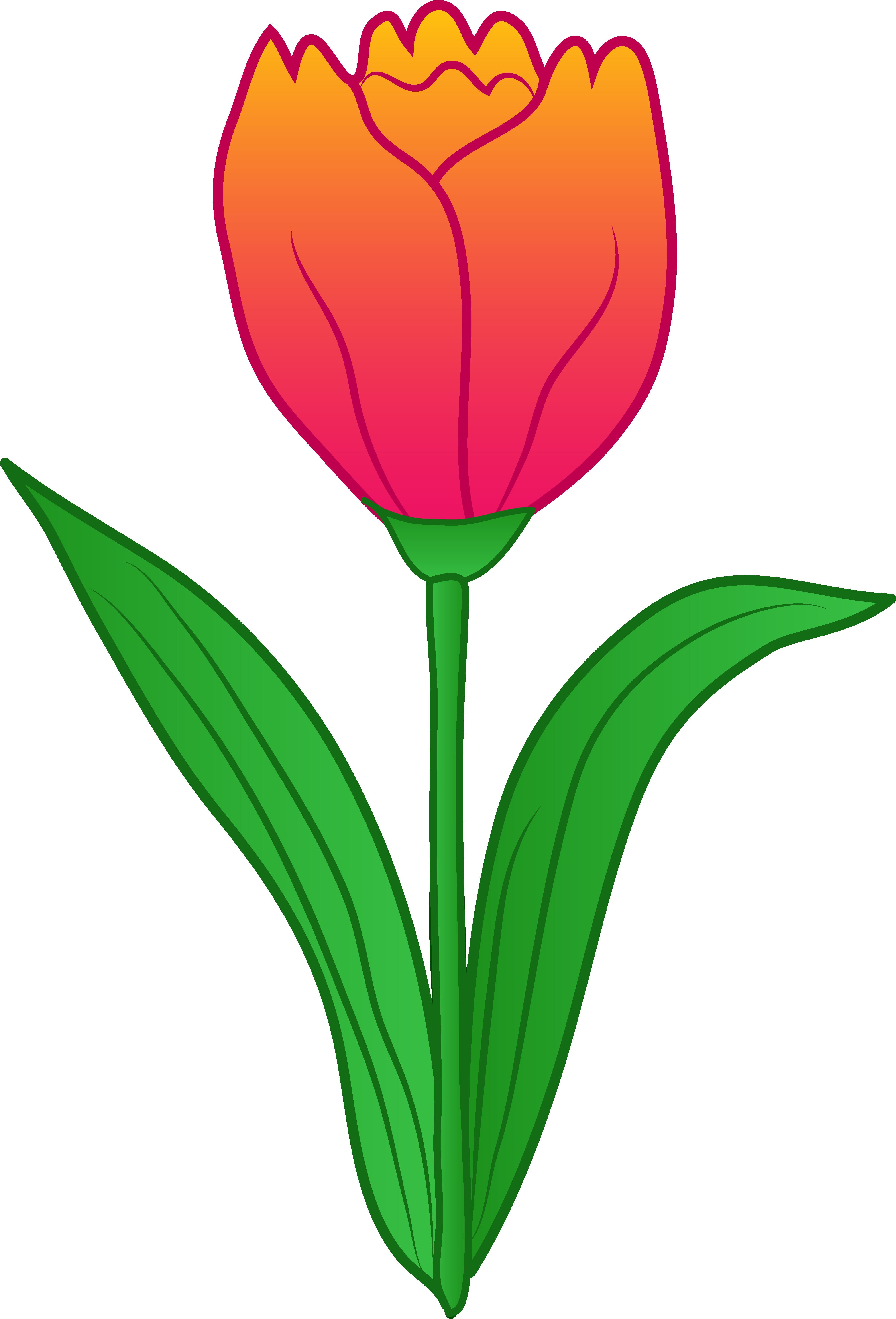 Clipart leaves tulip. Flower clip art free
