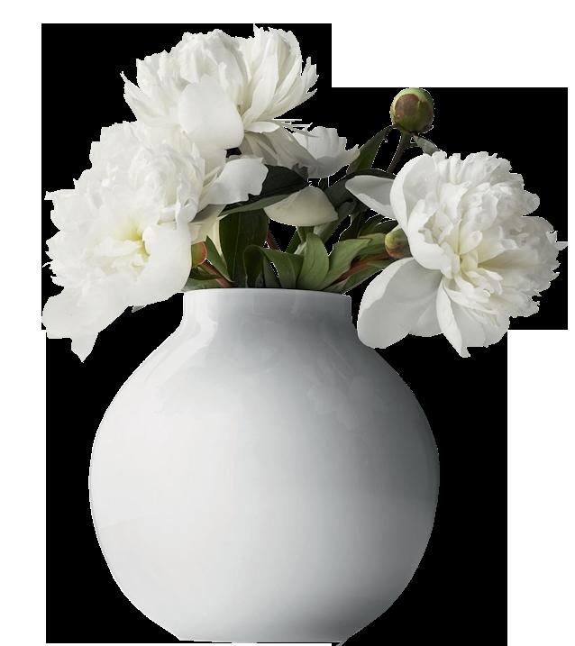 White pictures transparentpng . Flower vase png
