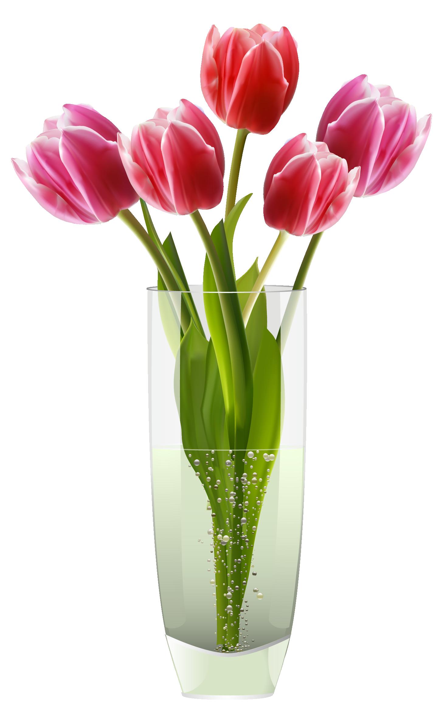 Poppy clipart orange tulip. Flowers in vase google