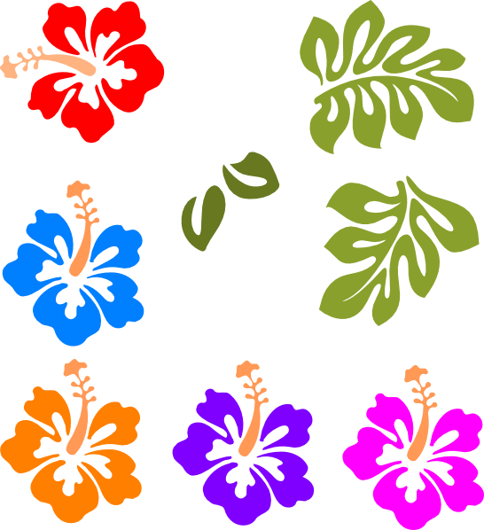 Free hawaiian flower vector. Environment clipart border