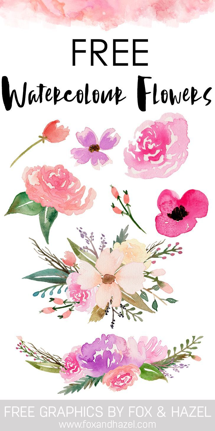 Floral clipart fox. Free watercolor flower graphics