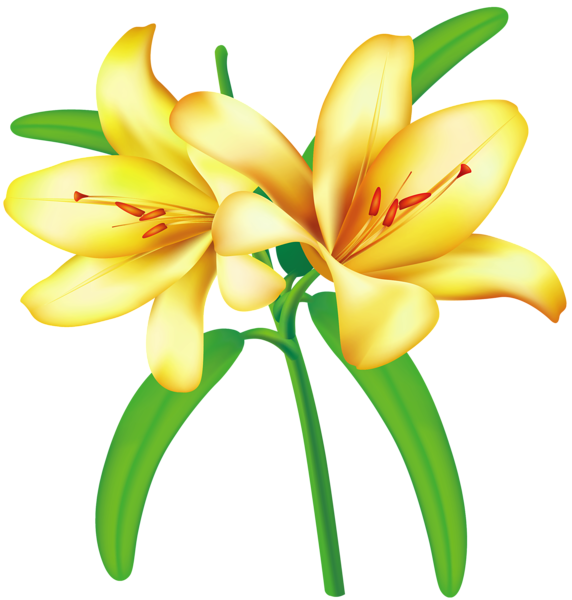 Clipart flower yellow. Http favata rssing com