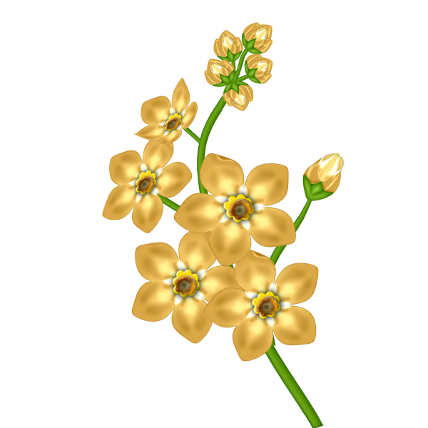 Flowers clipart yellow. Flower transparent gallery yopriceville