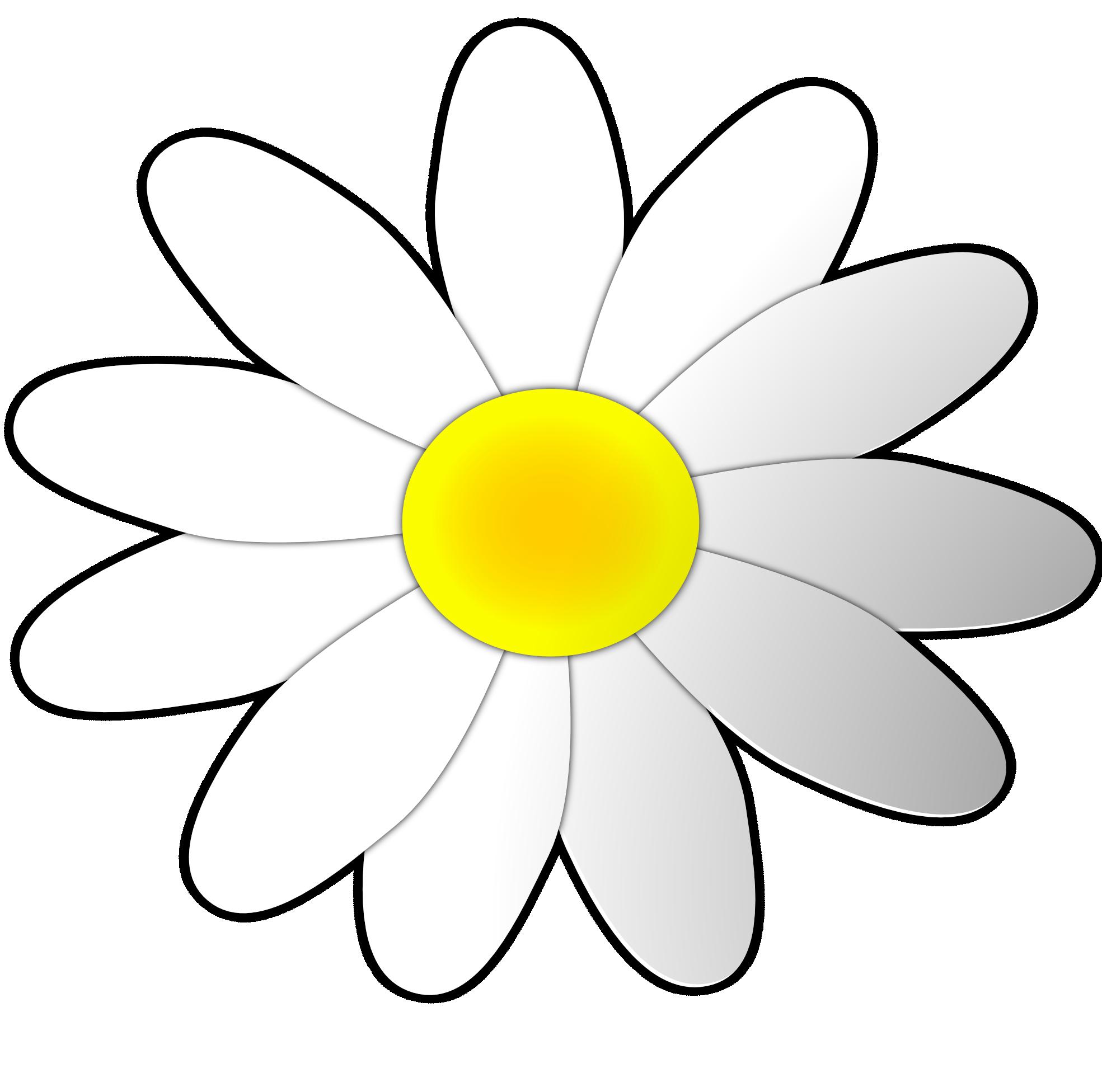 Daisy clipart small daisy. Cartoon flower best uwmsb