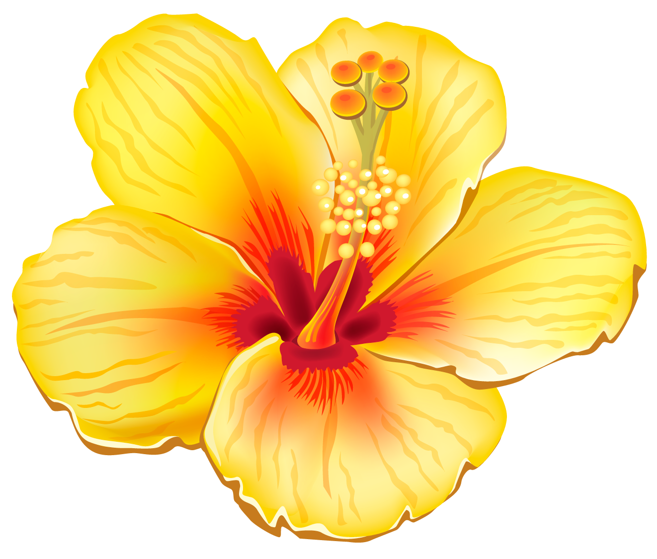 Tropical flower png. Yellow exotic clipart picture