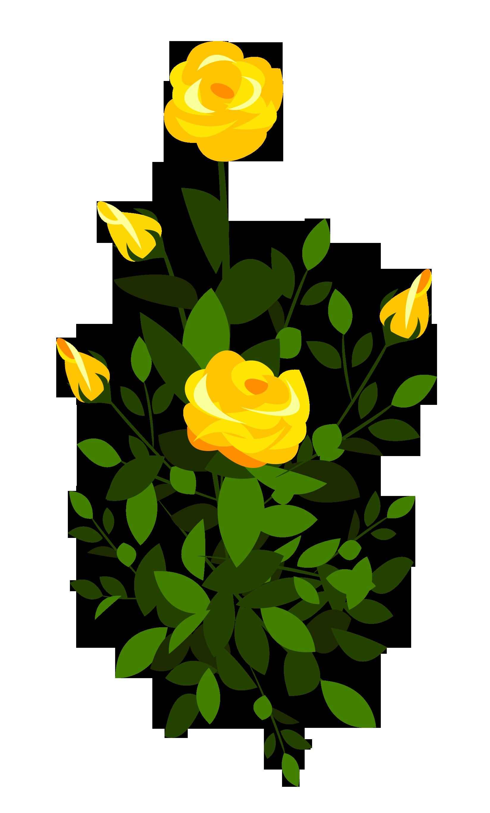 Yellw png transparent images. Clipart rose rose bush