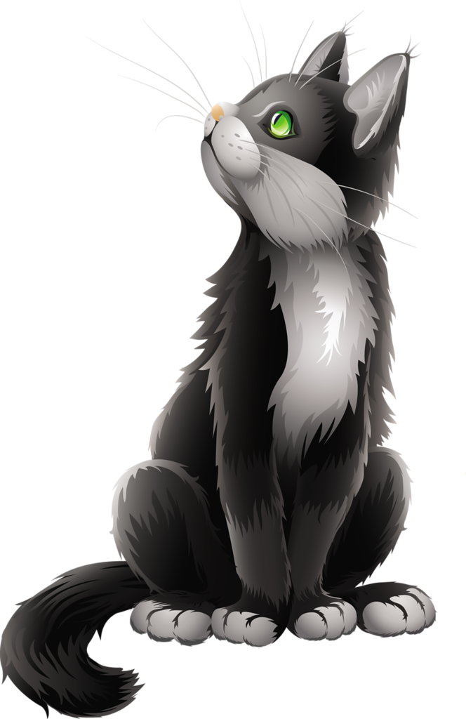 png pinterest cat. Kitty clipart realistic