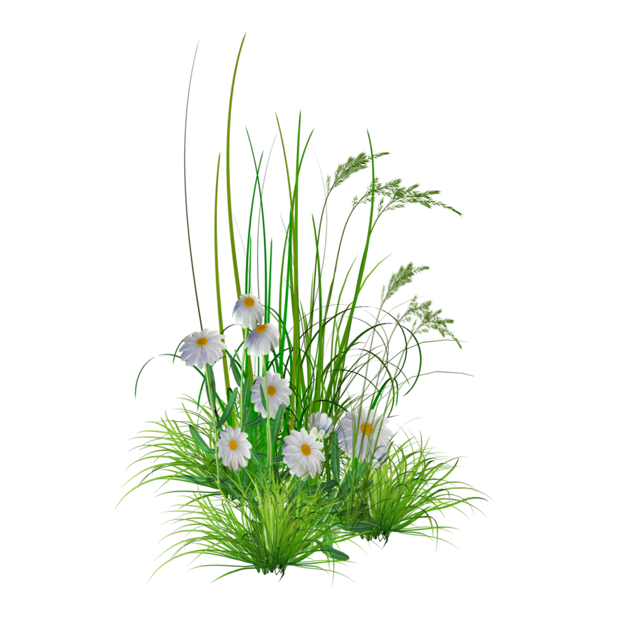 Flowers clipart garden. Png free images at
