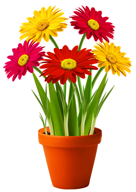 Bouquets fleurs tube flowers. Plants clipart potted plant
