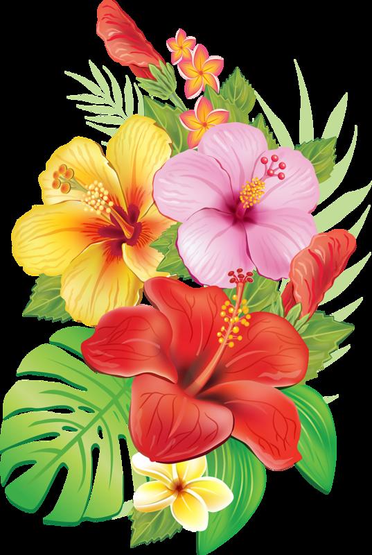 a cd e. Clipart flowers ocean