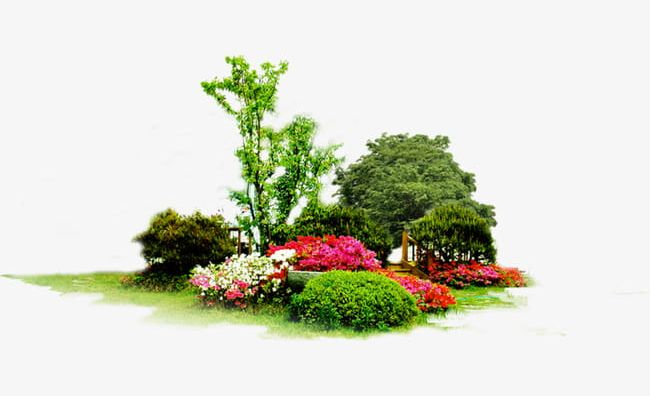 Spring png beauty in. Clipart flowers park