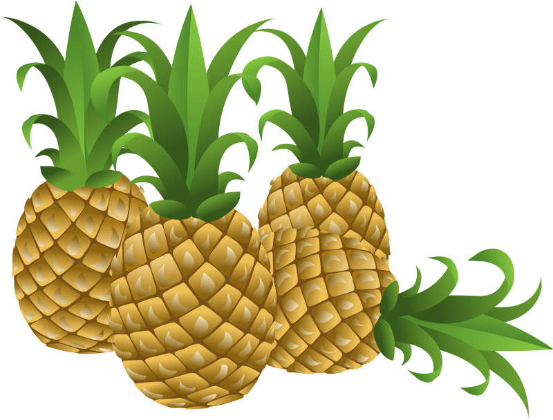 collection of free. Clipart pineapple flower
