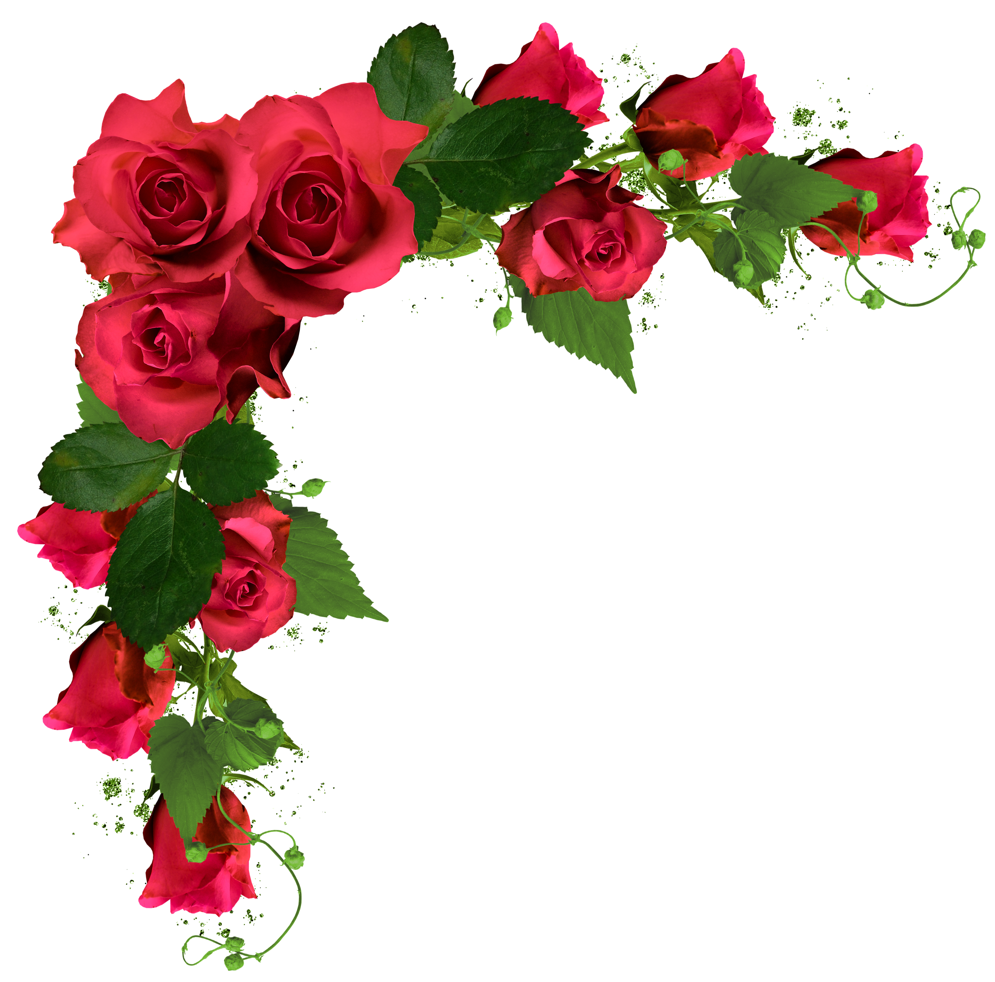 Beautiful decor with roses. Rose clipart frame